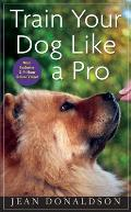 Train Your Dog Like a Pro with Exclusive Online Video