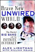 Brave New Unwired World The Digital Big Bang
