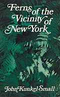 Ferns Of The Vicinity Of New York