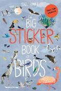 Big Sticker Book of Birds