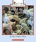Tiny Life On The Ground