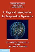 Physical Introduction to Suspension Dynamics