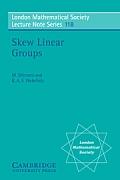 Skew Linear Groups
