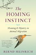 Homing Instinct Meaning & Mystery in Animal Migration