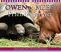 Owen & Mzee A Day Together Brd