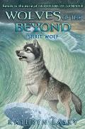 Spirit Wolf (Wolves of the Beyond #5), Volume 5