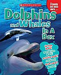 Dolphins & Whales in a Box