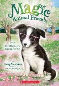 Magic Animal Friends 10 Evie Scruffypups Surprise