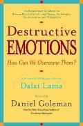 Destructive Emotions A Scientific Dialogue with the Dalai Lama