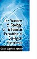 The Wonders of Geology: Or, a Familiar Exposition of Geological Phenomena