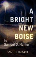 Bright New Boise