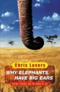 Why Elephants Have Big Ears Understandin