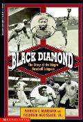 Black Diamond Story Of The Negro Baseba