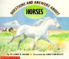 Questions & Answers About Horses