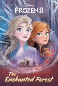Enchanted Forest Disney Frozen 2