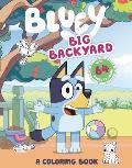 Big Backyard A Coloring Book