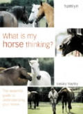 What Is My Horse Thinking The Essential Guide to Understanding Your Horse