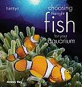 Choosing The Right Fish For Your Aquarium