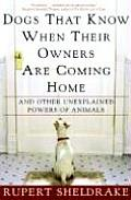 Dogs That Know When Their Owners Are Coming Home & Other Unexplained Powers of Animals