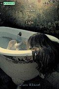 Light 01 Certain Slant of Light