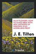 Wax Flowers: How to Make Them with New Methods of Sheeting Wax, Modelling Fruit