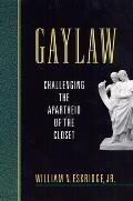 Gaylaw: Challenging the Apartheid of the Closet
