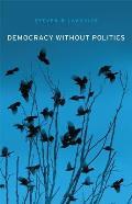 Democracy Without Politics