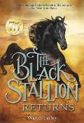Black Stallion 02 Black Stallion Returns
