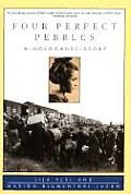 Four Perfect Pebbles:: A Holocaust Story