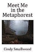 Meet Me in the Metaphorest