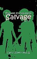 Parallel Encounters - Salvage