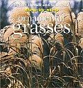 Ornamental Grasses Step By Step Series
