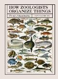 How Zoologists Organize Things The Art of Classification