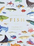 Secret Life of Fish The Astonishing Truth about our Aquatic Cousins