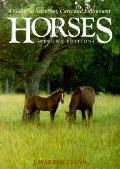 Horses 2nd Edition A Guide To Selection Care & Enjoyme