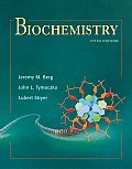 Biochemistry 5th Edition