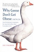 Why Geese Dont Get Obese & We Do How Evo