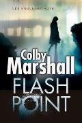 Flash Point A Psychological Thriller