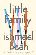 Little Family: A Novel
