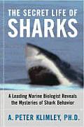 Secret Life Of Sharks A Leading Marine