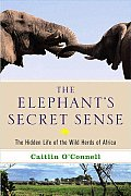 Elephants Secret Sense The Hidden Life of the Wild Herds of Africa