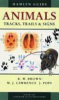 Animals Tracks Trails & Signs