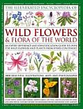 Illustrated Encyclopedia of Wildflowers & Flora of the World