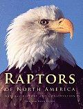 Raptors of North America Natural History & Conservation