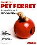Training Your Pet Ferret