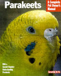 Parakeets Everything About Purchase Care