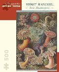 Ernst Haeckel Sea Anemones 500 Piece Jigsaw Puzzle