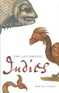 The Accidental Indies