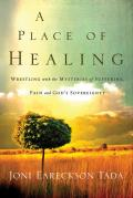 Place of Healing Wrestling with the Mysteries of Suffering Pain & Gods Sovereignty