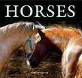 Horses (Flexi Cover)